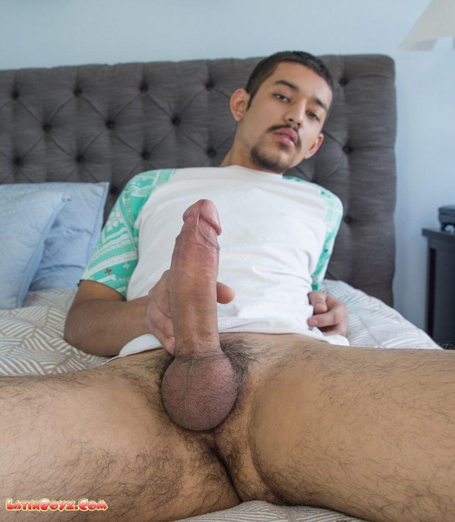 Latin cock