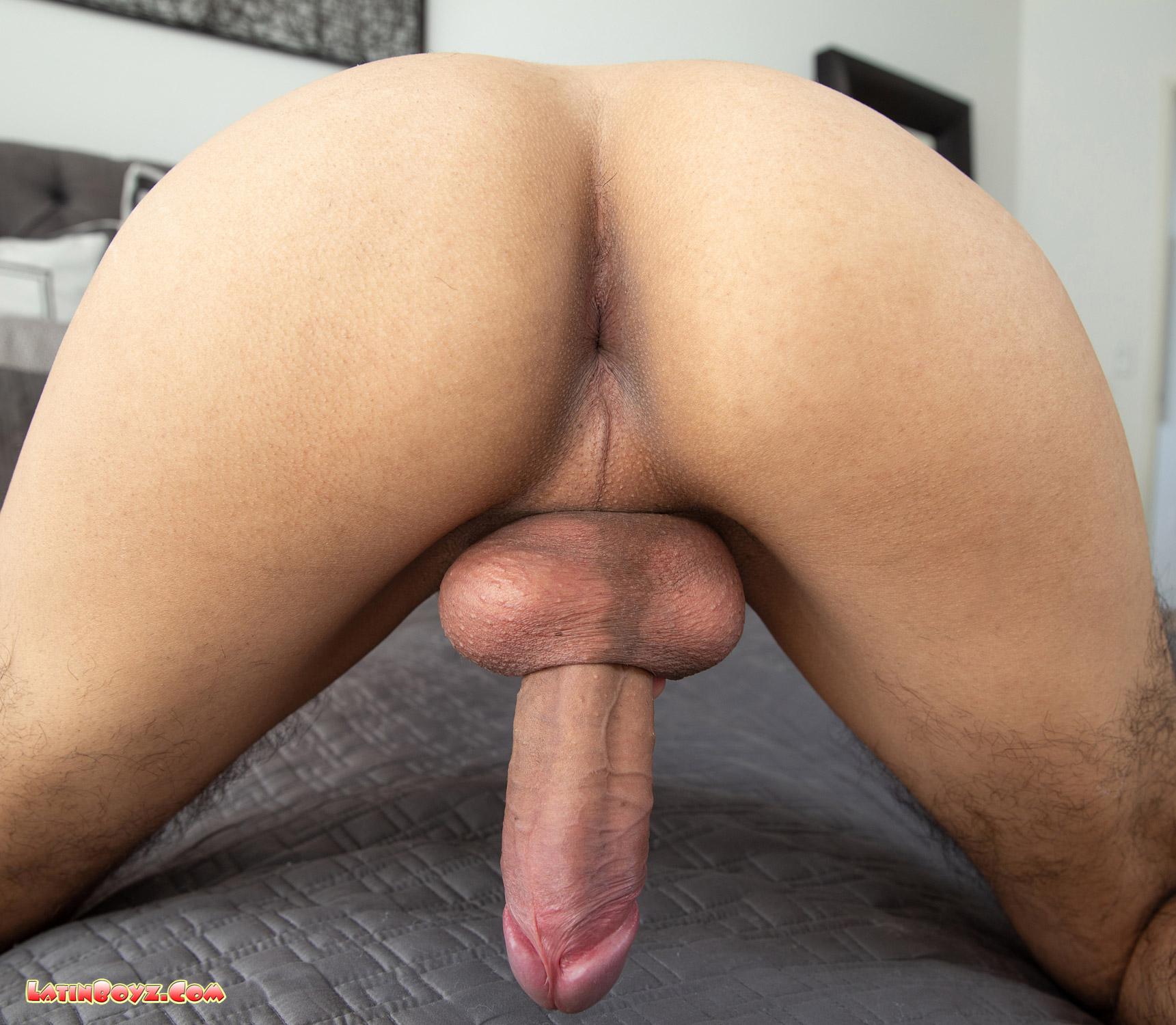Venicio's Latino twink ass and dick